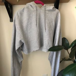Cropped grey champion hoodie